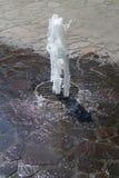 Restaure la fuente en el jardín zoológico, Ostrava imagenes de archivo