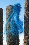 Reste d'un fishnet Images libres de droits