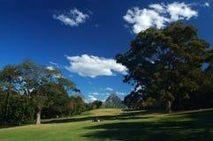 Reste dans le jardin botanique royal image libre de droits