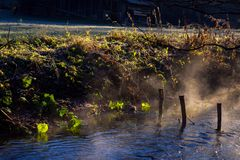 Resten van een natuurlijke houten brug over een moeraskreek Stock Afbeelding