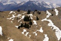 Restes de neige parmi des sapins sur la pente, Orobie, Orobie Image libre de droits