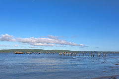 Restes de vieux pilier chez Sandy Point Beach Maine Images libres de droits