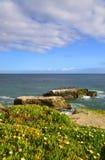 Restes des ponts naturels probables en Santa Cruz Photos stock