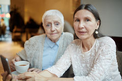 Restful buddies. Mature female buddies having rest in cafe Royalty Free Stock Images