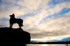 Resti calmano e si raffreddano alla chiesa di buon pastore nel lago Tekapo nei posti di paradiso, Nuova Zelanda del sud Fotografie Stock Libere da Diritti