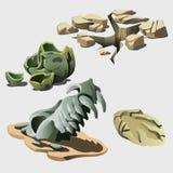 Resti degli elementi di preistoria e dell'animale Fotografia Stock