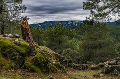 Resti della battaglia La Jarosa, Guadarrama, Madrid, Spagna fotografia stock