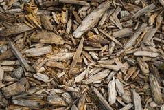 Resti di vecchio legno Immagine Stock Libera da Diritti