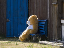 Resting bear. Teddy bear resting on a bench Stock Images
