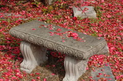 Resting bench. Cement bench in a old cemetery , covered with fallen flowers Stock Photo