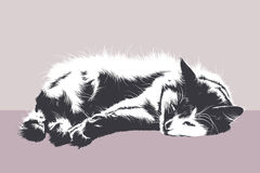 Resting cat. Fluffy white cat lying on a purple background. Vector image. Horizontal Royalty Free Stock Image