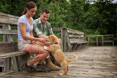 Resting on the dock. Young couple on a dock reading treats to their dog royalty free stock photography