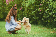 Resting with dog in park. Cheerful Vietnamese young woman playing with her puppy in the park Stock Images