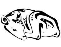 Resting Fawn vector illustration