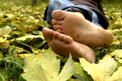 Resting Feet stock photo