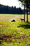 Resting outdoor. Autumn scenery of a person resting in the park Royalty Free Stock Photos