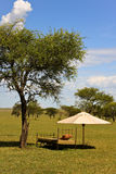 Resting Place. Bed and umbrella in the African Savannah stock photography
