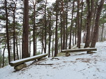 Resting place on Baltic sea coast, Lithuania. Resting place near Baltic sea coast in winter, Lithuania royalty free stock photo
