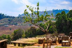 Resting place on a mountain in Thailand. Resting place on a mountain with wooden chairs, wooden tables and a green tree royalty free stock photo