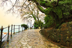 A resting place near the sea. A path near the sea with trees, View on Opatija, city of Croatia stock photo