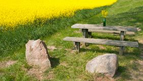 Resting place and. Field royalty free stock image