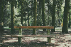 Resting place - wooden bench in the forest Stock Photo