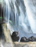 Resting primates and waterfall Royalty Free Stock Image
