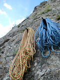 Resting ropes Stock Image