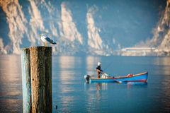 Resting seagull and fisherman. Lake Garda. Stock Image