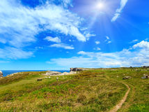 Resting on summer sunshiny coast. Place of rest table with benches on summer sunshiny blossoming sea coast near Camango, Asturias Spain Royalty Free Stock Photo