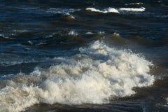 Restless Baltic sea. Royalty Free Stock Image