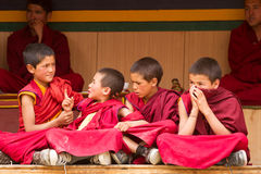Restless boys monks at the Cham Dance Festiva in Lamayuru royalty free stock photo