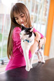 Restless cat with her owner at vet clinic Stock Photos
