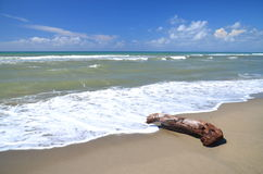 Restless sea on sandy beach Marina di Vecchiano nearby Pisa in Italy Royalty Free Stock Images