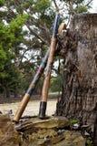 Resto australiano dos didgeridoos contra o coto maciço Imagem de Stock