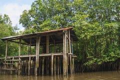 Resto-casa en el bosque del mangle Imagenes de archivo
