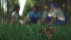 Resto del gruppo dei giardinieri dopo lavoro archivi video