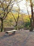 Resto en el parque Foto de archivo libre de regalías