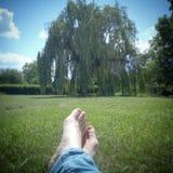 Resto en el parque de la primavera en la hierba fotos de archivo libres de regalías