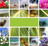 Resto en las zonas tropicales. Collage Fotografía de archivo