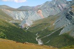 Resto en montañas Fotos de archivo