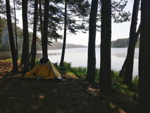 Resto in foresta vicino al lago immagine stock