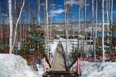 Resto no inverno Imagens de Stock Royalty Free