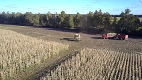 Resto superior de la cosechadora y del camión del maíz de la visión en campo cosechado almacen de metraje de vídeo