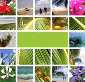 Resto in tropici. Collage Fotografia Stock