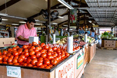 Restocking tomatoes at Durban Farms Market in Clanton. Clanton, Alabama, USA - June 17, 2017: An employee at Durban Farms Market restocks tomatoes in the display Royalty Free Stock Image