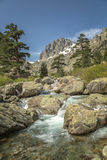 Restonica Valley in Corsica Royalty Free Stock Images