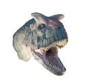 Restoration of a Carnotaurus (Carnotaurus sastrei) dinosaur isolated. Carnotaurus is a genus of large abelisaurid theropod dinosaur that lived in South America Royalty Free Stock Photos