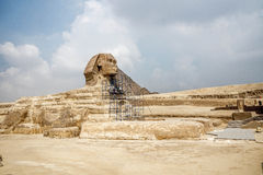 Restoration process of the Great Sphinx of Giza. Workers on scaffalods work on restoring the Great Sphinx of Giza  a limestone statue of a reclining mythical Royalty Free Stock Photo