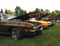 Restored Classic Cars. In a park at an antique car show Royalty Free Stock Photo